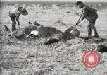 Image of federal soldiers Ojinaga Mexico, 1913, second 40 stock footage video 65675023029