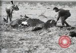 Image of federal soldiers Ojinaga Mexico, 1913, second 41 stock footage video 65675023029