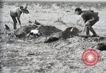 Image of federal soldiers Ojinaga Mexico, 1913, second 42 stock footage video 65675023029