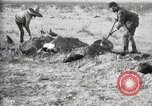 Image of federal soldiers Ojinaga Mexico, 1913, second 43 stock footage video 65675023029