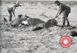 Image of federal soldiers Ojinaga Mexico, 1913, second 44 stock footage video 65675023029