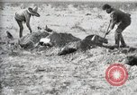 Image of federal soldiers Ojinaga Mexico, 1913, second 45 stock footage video 65675023029