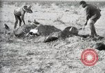 Image of federal soldiers Ojinaga Mexico, 1913, second 47 stock footage video 65675023029