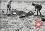 Image of federal soldiers Ojinaga Mexico, 1913, second 48 stock footage video 65675023029