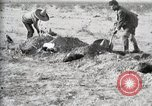 Image of federal soldiers Ojinaga Mexico, 1913, second 49 stock footage video 65675023029