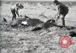 Image of federal soldiers Ojinaga Mexico, 1913, second 50 stock footage video 65675023029