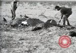 Image of federal soldiers Ojinaga Mexico, 1913, second 51 stock footage video 65675023029