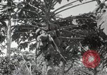 Image of Spanish Patio Mexico City Mexico, 1925, second 32 stock footage video 65675023038