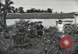 Image of Spanish Patio Mexico City Mexico, 1925, second 43 stock footage video 65675023038