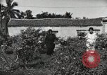 Image of Spanish Patio Mexico City Mexico, 1925, second 45 stock footage video 65675023038