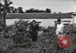 Image of Spanish Patio Mexico City Mexico, 1925, second 47 stock footage video 65675023038