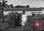 Image of Spanish Patio Mexico City Mexico, 1925, second 51 stock footage video 65675023038