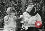 Image of Toy Loan Exchange during Great Depression Los Angeles California USA, 1935, second 29 stock footage video 65675023048