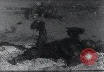 Image of AEF punitive expedition Mexico, 1916, second 25 stock footage video 65675023058
