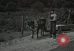 Image of Health care in Appalachia Boone North Carolina USA, 1934, second 21 stock footage video 65675023109