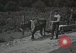 Image of Health care in Appalachia Boone North Carolina USA, 1934, second 22 stock footage video 65675023109