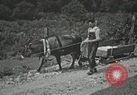Image of Health care in Appalachia Boone North Carolina USA, 1934, second 23 stock footage video 65675023109
