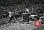 Image of Health care in Appalachia Boone North Carolina USA, 1934, second 24 stock footage video 65675023109