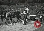 Image of Health care in Appalachia Boone North Carolina USA, 1934, second 25 stock footage video 65675023109