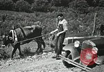 Image of Health care in Appalachia Boone North Carolina USA, 1934, second 26 stock footage video 65675023109
