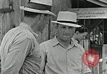 Image of Cumberland Homesteads Cumberland Tennessee USA, 1935, second 13 stock footage video 65675023111