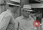 Image of Cumberland Homesteads Cumberland Tennessee USA, 1935, second 15 stock footage video 65675023111