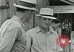 Image of Cumberland Homesteads Cumberland Tennessee USA, 1935, second 17 stock footage video 65675023111