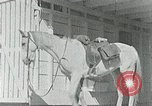 Image of Appalachian health care Campbell County Tennessee USA, 1935, second 13 stock footage video 65675023112