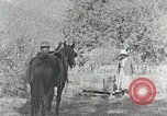 Image of Allanstand Cottage Industries Asheville North Carolina USA, 1935, second 5 stock footage video 65675023115
