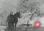 Image of Allanstand Cottage Industries Asheville North Carolina USA, 1935, second 6 stock footage video 65675023115