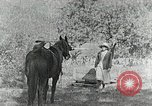 Image of Allanstand Cottage Industries Asheville North Carolina USA, 1935, second 8 stock footage video 65675023115