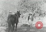 Image of Allanstand Cottage Industries Asheville North Carolina USA, 1935, second 9 stock footage video 65675023115
