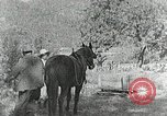 Image of Allanstand Cottage Industries Asheville North Carolina USA, 1935, second 15 stock footage video 65675023115