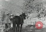 Image of Allanstand Cottage Industries Asheville North Carolina USA, 1935, second 16 stock footage video 65675023115