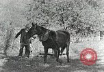 Image of Allanstand Cottage Industries Asheville North Carolina USA, 1935, second 23 stock footage video 65675023115