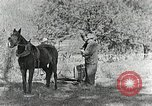 Image of Allanstand Cottage Industries Asheville North Carolina USA, 1935, second 27 stock footage video 65675023115