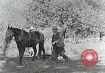 Image of Allanstand Cottage Industries Asheville North Carolina USA, 1935, second 29 stock footage video 65675023115