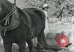 Image of Allanstand Cottage Industries Asheville North Carolina USA, 1935, second 31 stock footage video 65675023115