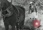 Image of Allanstand Cottage Industries Asheville North Carolina USA, 1935, second 34 stock footage video 65675023115
