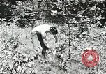 Image of Summer work camps Flint Michigan USA, 1938, second 46 stock footage video 65675023121