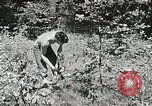 Image of Summer work camps Flint Michigan USA, 1938, second 47 stock footage video 65675023121