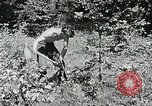 Image of Summer work camps Flint Michigan USA, 1938, second 49 stock footage video 65675023121
