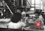 Image of Preparation of penicillin drug United States USA, 1944, second 9 stock footage video 65675023162