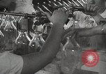 Image of Preparation of penicillin drug United States USA, 1944, second 11 stock footage video 65675023162