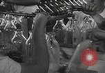 Image of Preparation of penicillin drug United States USA, 1944, second 14 stock footage video 65675023162