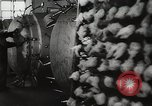 Image of Preparation of penicillin drug United States USA, 1944, second 16 stock footage video 65675023162