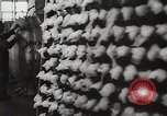 Image of Preparation of penicillin drug United States USA, 1944, second 17 stock footage video 65675023162