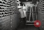 Image of Preparation of penicillin drug United States USA, 1944, second 35 stock footage video 65675023162