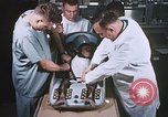 Image of Chimpanzee for spacecraft testing United States USA, 1960, second 23 stock footage video 65675023324