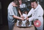 Image of Chimpanzee for spacecraft testing United States USA, 1960, second 33 stock footage video 65675023324